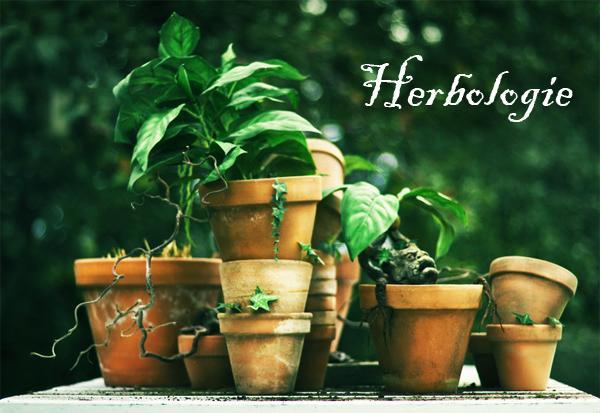 herbologie.jpg